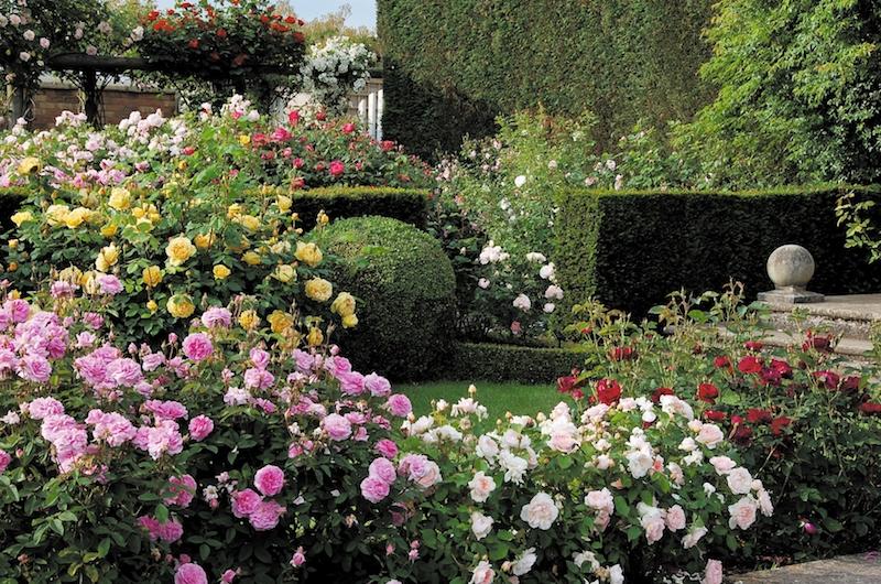 renaissance_garden