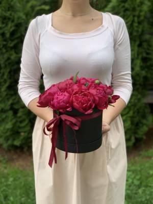 11 Бордовых пионов в шляпной коробке - заказ и доставка цветов Киев