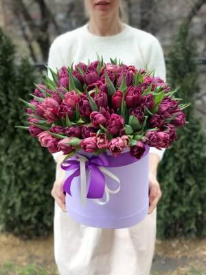 101 фиолетовый пионовидный тюльпан в коробке - заказ и доставка цветов Киев