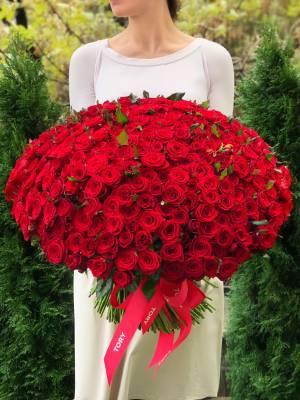 Букет 301 красная роза - заказ и доставка цветов Киев