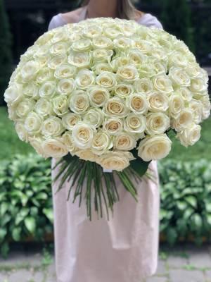 Букет 201 белая роза Аваланч - заказ и доставка цветов Киев