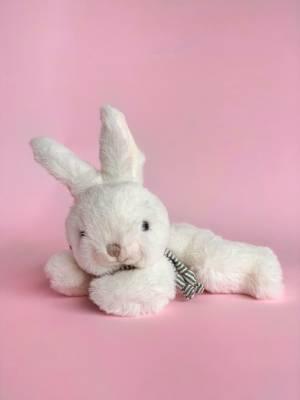 Іграшка Коко, 15 см - заказ и доставка цветов Киев