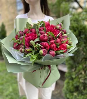 Букет 51 Бордовый пион - заказ и доставка цветов Киев