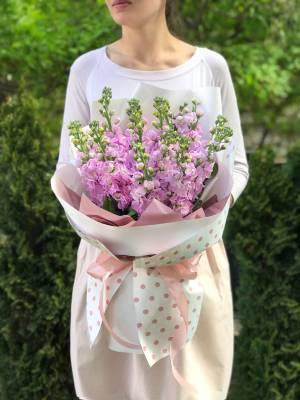 Букет 15 розовых маттиол - заказ и доставка цветов Киев