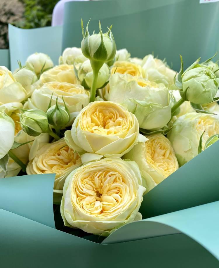 Букет 19 роз спрей Пиони Баблс