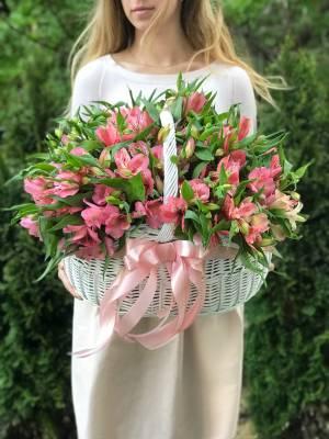 Alstroemeria in the Basket