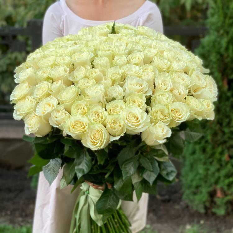 Букет 101 белая импортная роза, 80 см