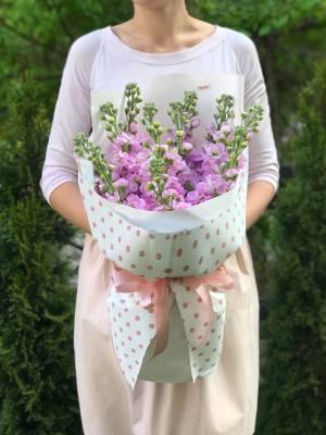 Букет 11 розовых маттиол - заказ и доставка цветов Киев