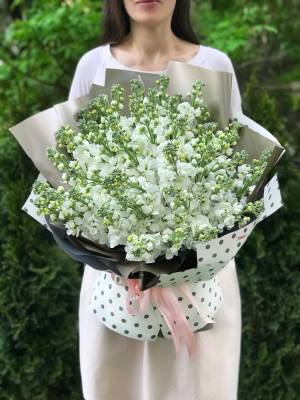 Букет 51 белая маттиола - заказ и доставка цветов Киев