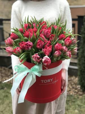 101 красный пионовидный тюльпан в коробке - заказ и доставка цветов Киев