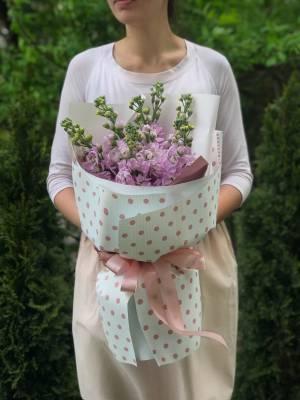 Букет 7 розовых маттиол - заказ и доставка цветов Киев